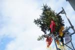 Darf beim Richtfest auch nicht fehlen: Richtbaum