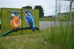Freiluftschrank am Regenüberlaufbecken Mahden in Altenburg nach der Gestaltung mit Eisvogelmotiv
